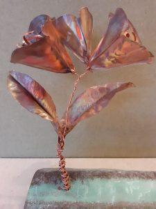 Form folded flowers